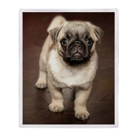Curious Pug Puppy Throw Blanket & Pug Lovers Gifts - CafePress