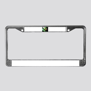 heliconia License Plate Frame