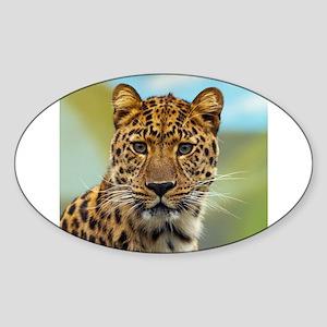 Jaguar009 Sticker