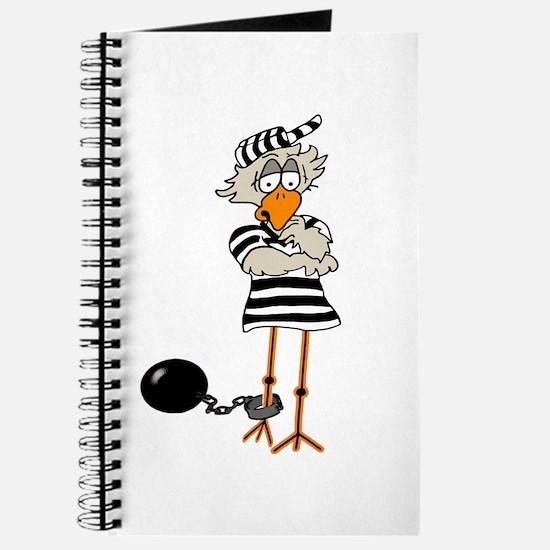 Prison Journal