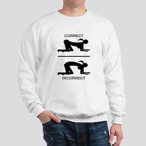 Correct Your Position, Adult Humor Sweatshirt