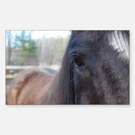 Horse eye Sticker (Rectangle)