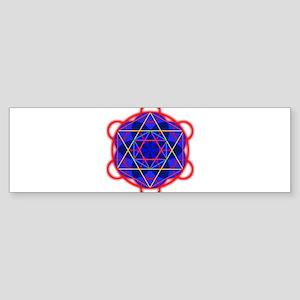 Metaron RedBllue Sticker (Bumper)