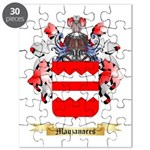 Manzanares Puzzle