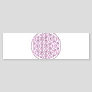Pink FOL Sticker (Bumper)