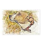 Jack Russell Sketch Postcards (Package of 8)