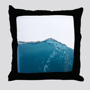 Funny Water Novelty Humor art Throw Pillow