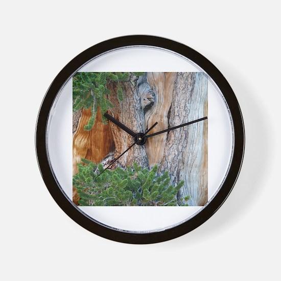 Cute Pine tree Wall Clock