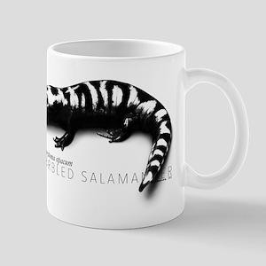Ambystoma Opacum | Marbled Salamander Mugs