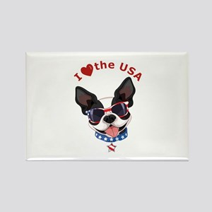 Love for the USA - Rectangle Magnet