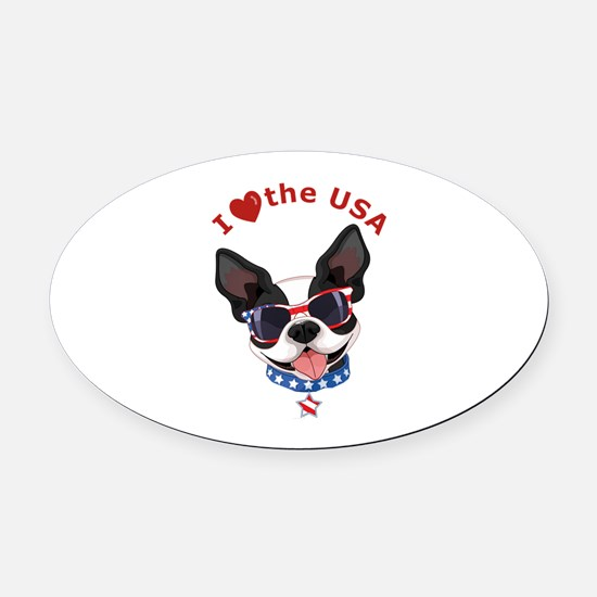 Love for the USA - Oval Car Magnet