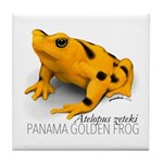 Atelopus Zeteki   Panamanian Golden Tile Coaster