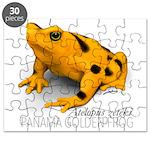 Atelopus Zeteki   Panamanian Golden Frog Puzzle