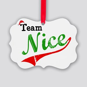 Team Nice Picture Ornament