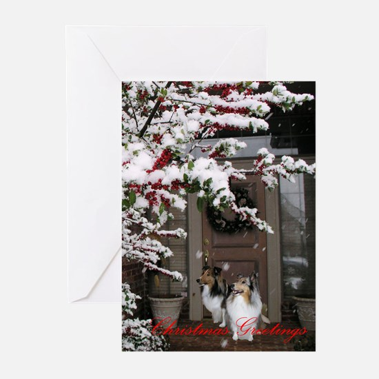 Cool Fronts Greeting Cards (Pk of 20)