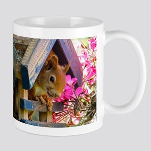 Adorable Squirrel in Little House Mugs