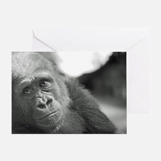 Unique Bronx zoo Greeting Card