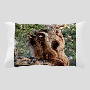 Bristlecone Pine Pillow Case