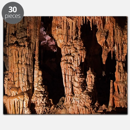 Cute Great basin national park Puzzle