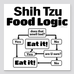 "Shih Tzu Food Square Car Magnet 3"" x 3"""