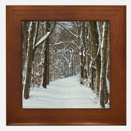 nature trail Framed Tile