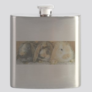 Harlequin Mini Lop Trio Flask