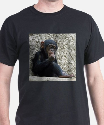 Chimpanzee003 T-Shirt