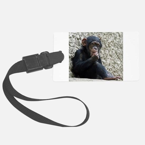 Chimpanzee003 Luggage Tag