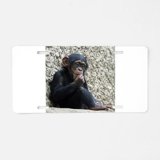 Chimpanzee003 Aluminum License Plate