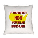 Immigration Everyday Pillow