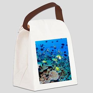 FR FRIGATE SHOALS Canvas Lunch Bag
