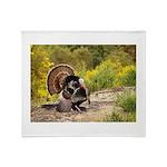 Wild Turkey Gobbler Throw Blanket