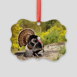 Wild Turkey Gobbler Picture Ornament
