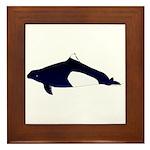 Dall's Porpoise Framed Tile