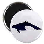 Dall's Porpoise Magnets