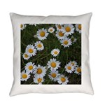 Shasta Daisies Everyday Pillow