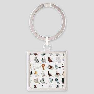 36 Pigeon Breeds Square Keychain