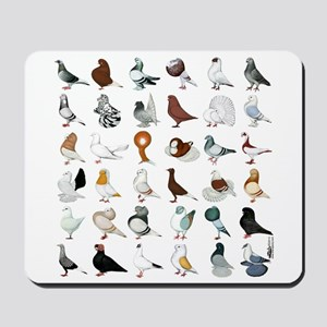 36 Pigeon Breeds Mousepad
