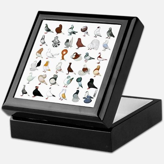 36 Pigeon Breeds Keepsake Box