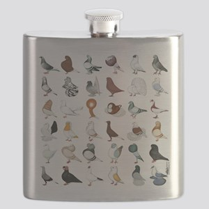 36 Pigeon Breeds Flask