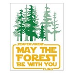 May The Forest Be With You Posters Small Poster