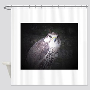Falcon, Bird of Prey by Tom Conway. Shower Curtain