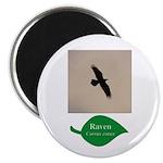Flying Raven Magnet