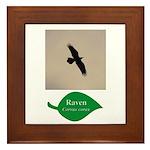 Flying Raven Framed Tile