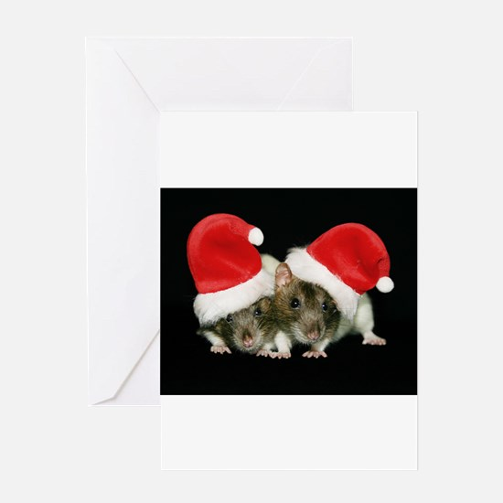 Cute Christmas sister Greeting Card