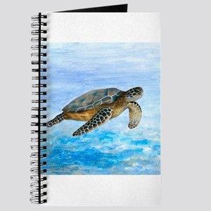 Turtle 1 Journal