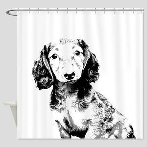 Dachshund puppy Shower Curtain