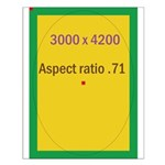 Rectangle Magnet Image 3 Small Poster