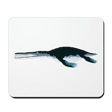 Liopleurodon Mousepad