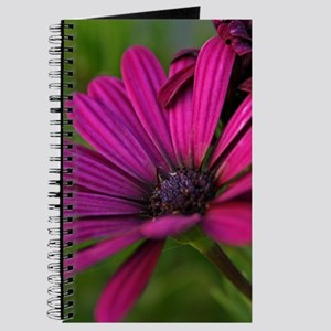 Purple Flower Blossom Journal